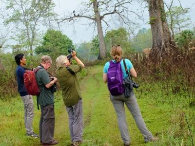Birding-in-Nepal-Samsara-Trekking