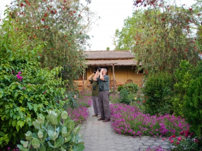 Birding-in-Nepal-Samsara-Trekking2