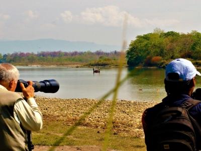 Birding in Nawalparasi