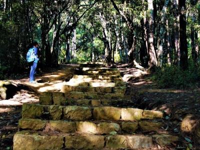 Mindfulness Day Hiking