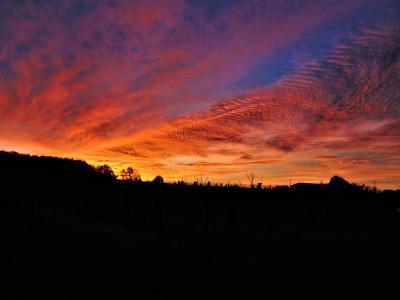 Dawn of the Dharma