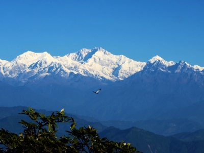 Kanchenjungha Trek with Nepal Trekking Guide